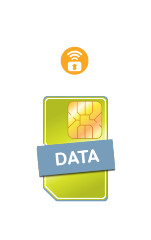 Pure Data 4G SIM Card