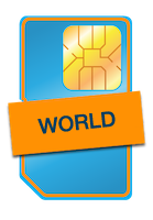 World Sim Icon